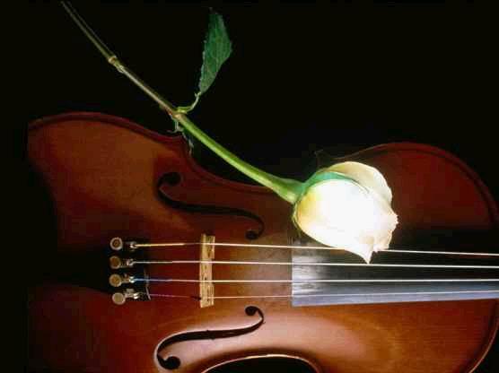 一首极尽缠绵的小提琴曲